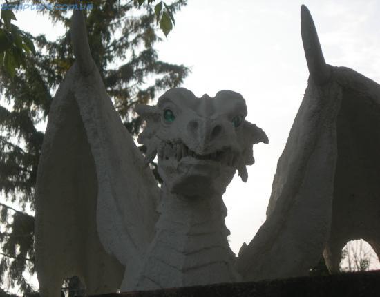 Взгляд дракона фото